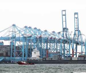 Terminal APM de contenedores en Algeciras.